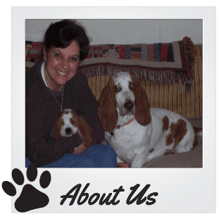 About Us - Lowdown Love Basset Hounds